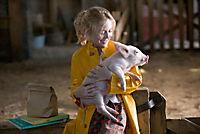 Schweinchen Wilbur und seine Freunde - Produktdetailbild 3
