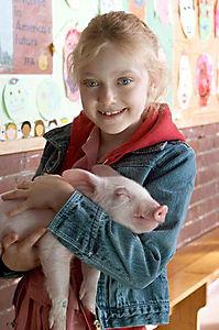 Schweinchen Wilbur und seine Freunde - Produktdetailbild 6