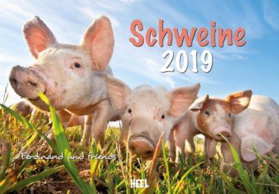 Schweine 2019