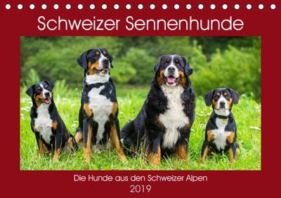 Schweizer Sennenhunde - die Hunde aus den Schweizer Alpen (Tischkalender 2019 DIN A5 quer), Sigrid Starick