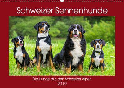 Schweizer Sennenhunde - die Hunde aus den Schweizer Alpen (Wandkalender 2019 DIN A2 quer), Sigrid Starick
