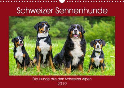 Schweizer Sennenhunde - die Hunde aus den Schweizer Alpen (Wandkalender 2019 DIN A3 quer), Sigrid Starick