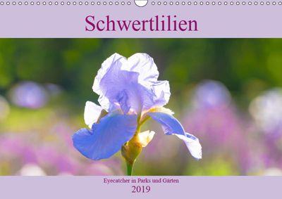 Schwertlilien - Eyecatcher in Parks und Gärten (Wandkalender 2019 DIN A3 quer), Monika Scheurer