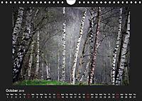 Scottish Woodlands (Wall Calendar 2019 DIN A4 Landscape) - Produktdetailbild 10