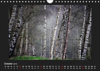 Scottish Woodlands (Wall Calendar 2019 DIN A4 Landscape) - Produktdetailbild 10