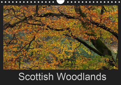 Scottish Woodlands (Wall Calendar 2019 DIN A4 Landscape), Pierre Guillemin