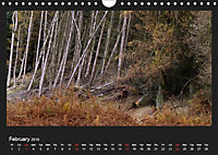 Scottish Woodlands (Wall Calendar 2019 DIN A4 Landscape) - Produktdetailbild 2
