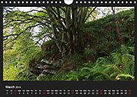 Scottish Woodlands (Wall Calendar 2019 DIN A4 Landscape) - Produktdetailbild 3
