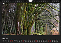 Scottish Woodlands (Wall Calendar 2019 DIN A4 Landscape) - Produktdetailbild 5
