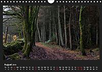 Scottish Woodlands (Wall Calendar 2019 DIN A4 Landscape) - Produktdetailbild 8