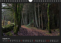 Scottish Woodlands (Wall Calendar 2019 DIN A4 Landscape) - Produktdetailbild 8