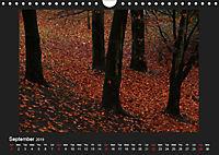 Scottish Woodlands (Wall Calendar 2019 DIN A4 Landscape) - Produktdetailbild 9