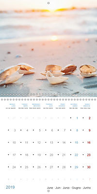 Sea Longing (Wall Calendar 2019 300 × 300 mm Square) - Produktdetailbild 6