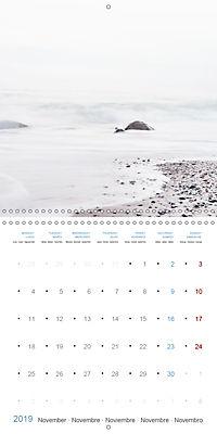 Sea Longing (Wall Calendar 2019 300 × 300 mm Square) - Produktdetailbild 11