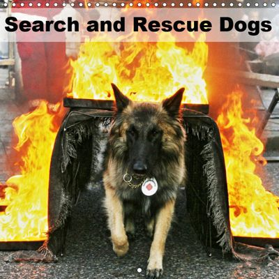 Search and Rescue Dogs (Wall Calendar 2019 300 × 300 mm Square), Ulf Mirlieb