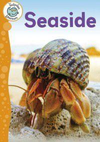 Seaside, Annabelle Lynch
