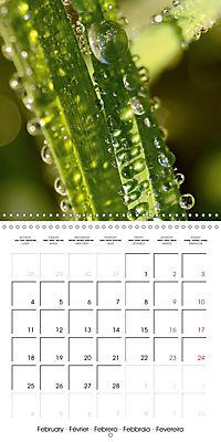 Seasonal macros (Wall Calendar 2019 300 × 300 mm Square) - Produktdetailbild 2