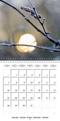 Seasonal macros (Wall Calendar 2019 300 × 300 mm Square) - Produktdetailbild 1