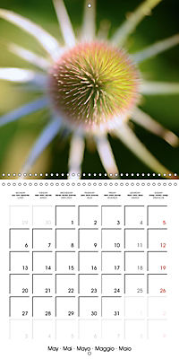 Seasonal macros (Wall Calendar 2019 300 × 300 mm Square) - Produktdetailbild 5