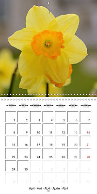 Seasonal macros (Wall Calendar 2019 300 × 300 mm Square) - Produktdetailbild 4