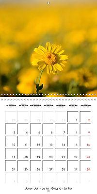 Seasonal macros (Wall Calendar 2019 300 × 300 mm Square) - Produktdetailbild 6