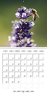 Seasonal macros (Wall Calendar 2019 300 × 300 mm Square) - Produktdetailbild 7