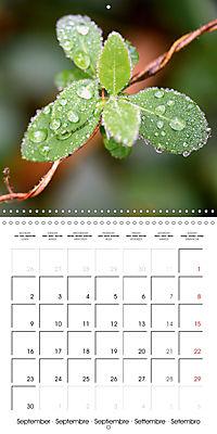 Seasonal macros (Wall Calendar 2019 300 × 300 mm Square) - Produktdetailbild 9
