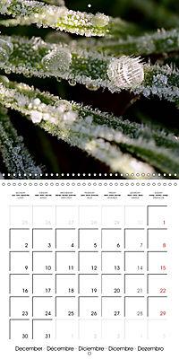 Seasonal macros (Wall Calendar 2019 300 × 300 mm Square) - Produktdetailbild 12