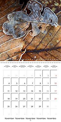 Seasonal macros (Wall Calendar 2019 300 × 300 mm Square) - Produktdetailbild 11