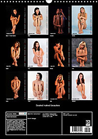 Seated naked beauties (Wall Calendar 2019 DIN A3 Portrait) - Produktdetailbild 1