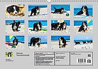 Seebärchen entdecken die Welt - Berner Sennenhunde (Wandkalender 2019 DIN A3 quer) - Produktdetailbild 13