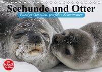 Seehunde und Otter. Putzige Gesellen, perfekte Schwimmer (Tischkalender 2019 DIN A5 quer), Elisabeth Stanzer