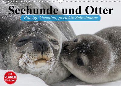 Seehunde und Otter. Putzige Gesellen, perfekte Schwimmer (Wandkalender 2019 DIN A3 quer), Elisabeth Stanzer