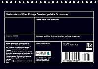 Seehunde und Otter. Putzige Gesellen, perfekte Schwimmer (Tischkalender 2019 DIN A5 quer) - Produktdetailbild 13