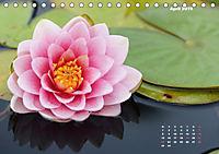 SeerosenWelt (Tischkalender 2019 DIN A5 quer) - Produktdetailbild 4