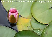 SeerosenWelt (Tischkalender 2019 DIN A5 quer) - Produktdetailbild 8