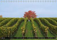 Sehenswerter Bodensee (Tischkalender 2019 DIN A5 quer) - Produktdetailbild 5