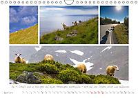 Sehnsucht Norwegen - Meer, Wasserfälle, Fjorde und Fjells - Der Südwesten (Wandkalender 2019 DIN A4 quer) - Produktdetailbild 4