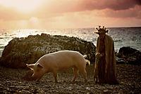 Seine Majestät das Schwein - Produktdetailbild 3