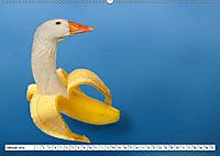 Seltsame Früchtchen (Wandkalender 2019 DIN A2 quer) - Produktdetailbild 1
