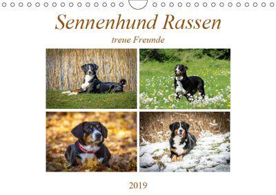 Sennenhund Rassen (Wandkalender 2019 DIN A4 quer), SchnelleWelten