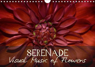 Serenade Visual Music of Flowers (Wall Calendar 2019 DIN A4 Landscape), Vronja Photon