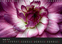 Serenade Visual Music of Flowers (Wall Calendar 2019 DIN A4 Landscape) - Produktdetailbild 3