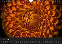 Serenade Visual Music of Flowers (Wall Calendar 2019 DIN A4 Landscape) - Produktdetailbild 4