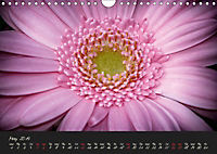 Serenade Visual Music of Flowers (Wall Calendar 2019 DIN A4 Landscape) - Produktdetailbild 5