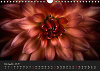 Serenade Visual Music of Flowers (Wall Calendar 2019 DIN A4 Landscape) - Produktdetailbild 11