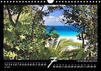 Seychellen Impressionen - Ansichten und Begegnungen auf La Digue (Wandkalender 2019 DIN A4 quer) - Produktdetailbild 7