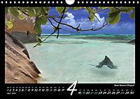 Seychellen Impressionen - Ansichten und Begegnungen auf La Digue (Wandkalender 2019 DIN A4 quer) - Produktdetailbild 4