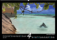 Seychellen Impressionen - Ansichten und Begegnungen auf La Digue (Wandkalender 2019 DIN A2 quer) - Produktdetailbild 4