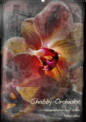 Shabby - Orchidee, Interpretation auf alten Fotoplatten (Wandkalender 2019 DIN A2 hoch), Erwin Renken